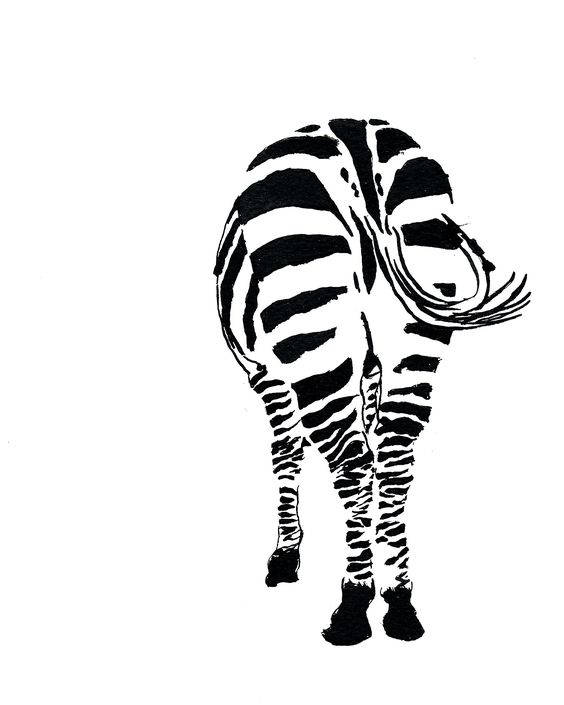 564x705 Zebra Butt Ink Sketch Ink Drawing Pen Ink Black