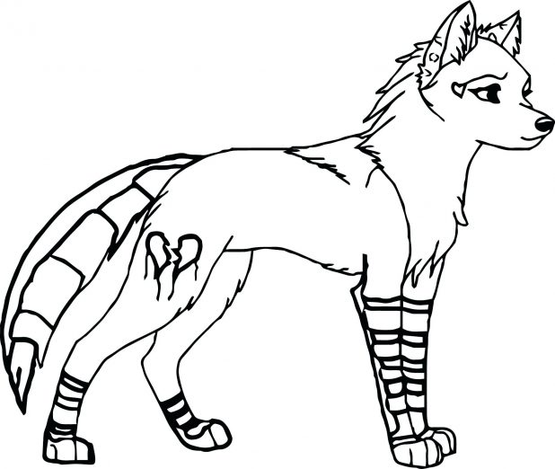 618x522 Coloring Pages Astonishing Arctic Wolf Coloring Pages. Animal Jam
