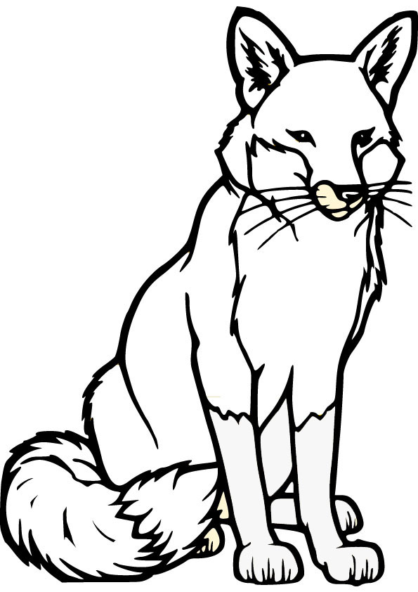 595x842 Drawn Fox Coloring Page