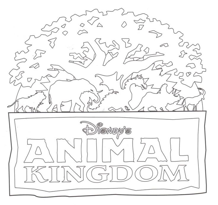 Animal Kingdom Drawing