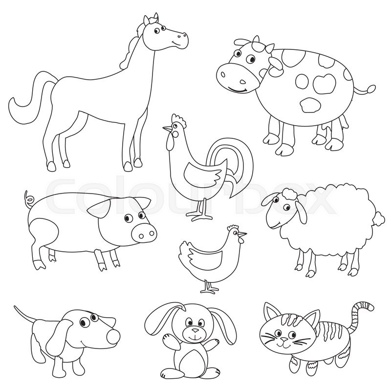 800x800 Cute Cartoon Farm Animals And Birds For Coloring Book. Outline