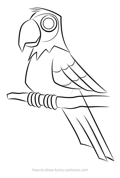 420x621 Parrot Drawing (Sketching + Vector)