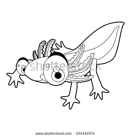 450x470 Axolotl Animal Coloring Pages