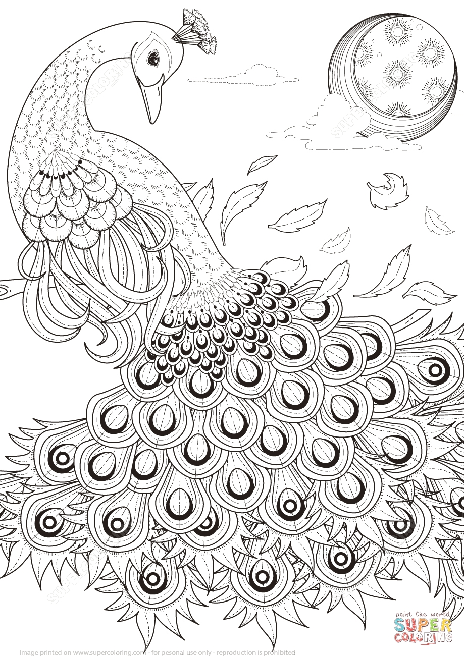 919x1300 Adult Coloring Pages Animal Patterns Peacock Printable