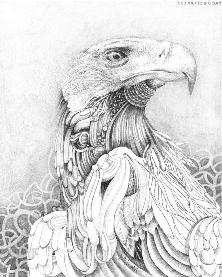 736x920 13 Best Pencil Drawings Images On Drawings In Pencil