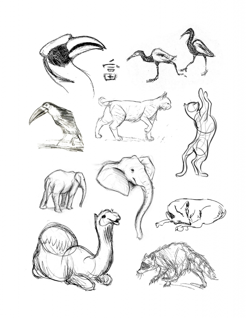 791x1024 Drawing Images Of Animals Animal Pictures For Drawing Pencil
