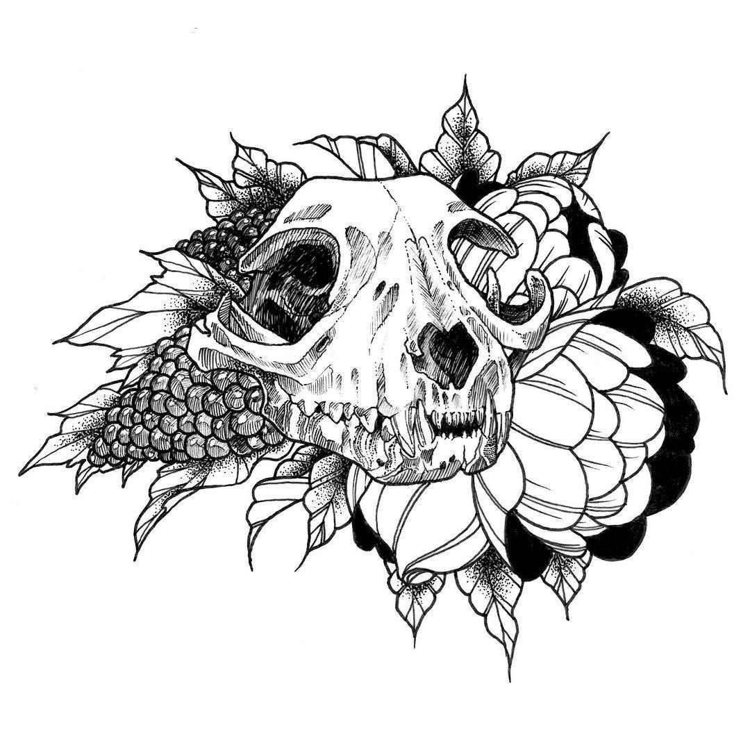 1080x1080 Animal Skull Drawing