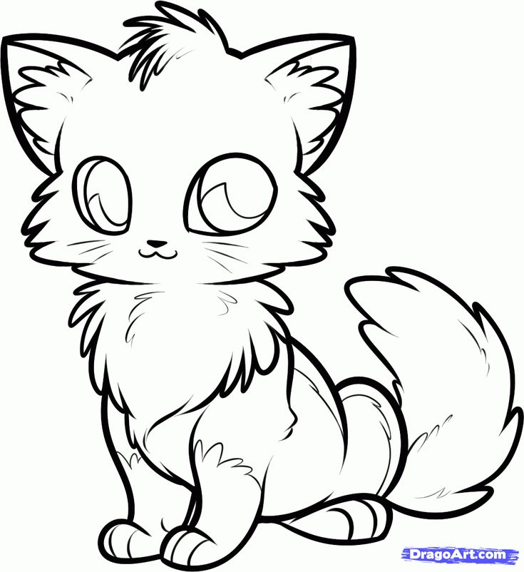 735x802 Gallery Anime Animal Drawings,