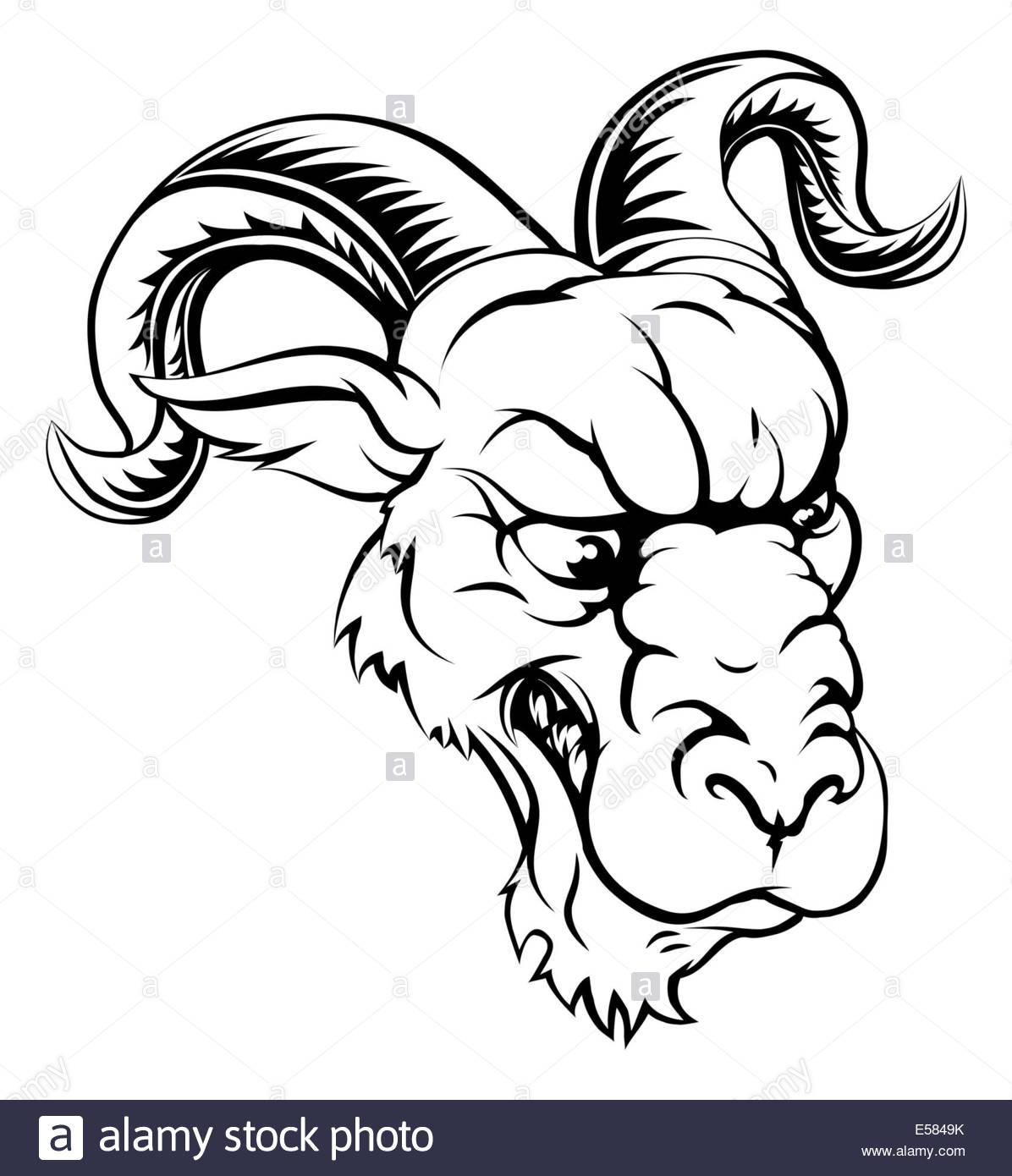 Animal Ram Drawing