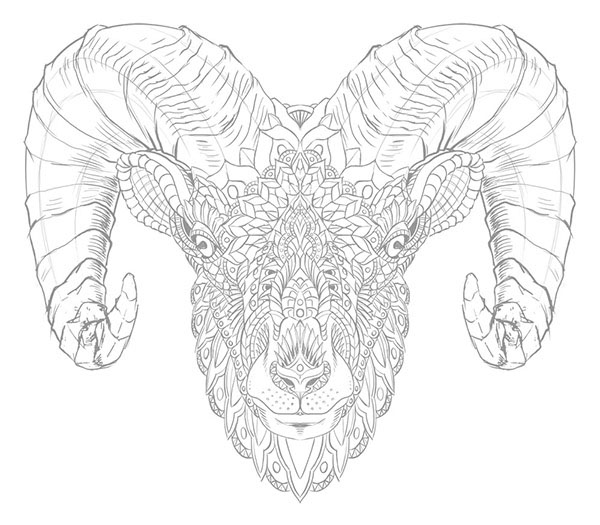 600x525 Ram Head (Tattoo Design) On Behance