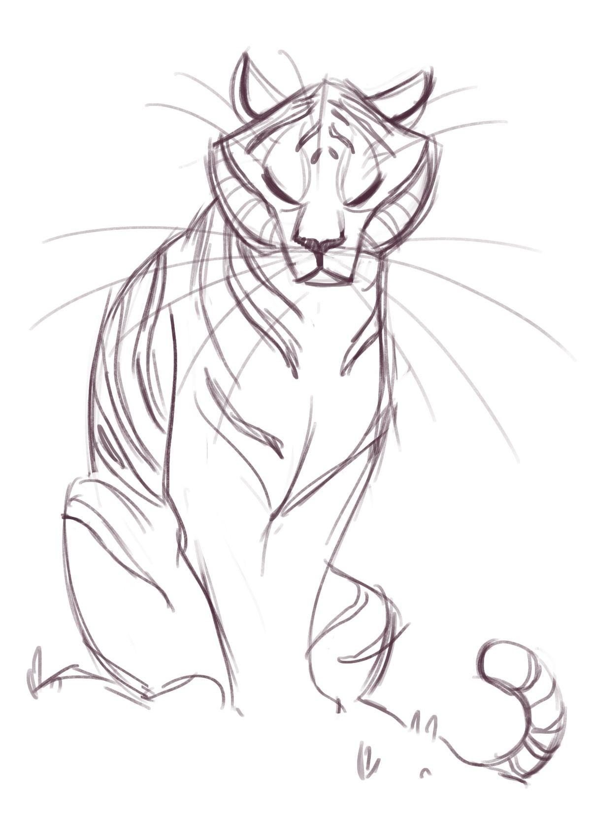 Animal Sketch Drawing