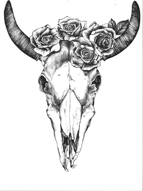 570x760 Bull Skull With Roses