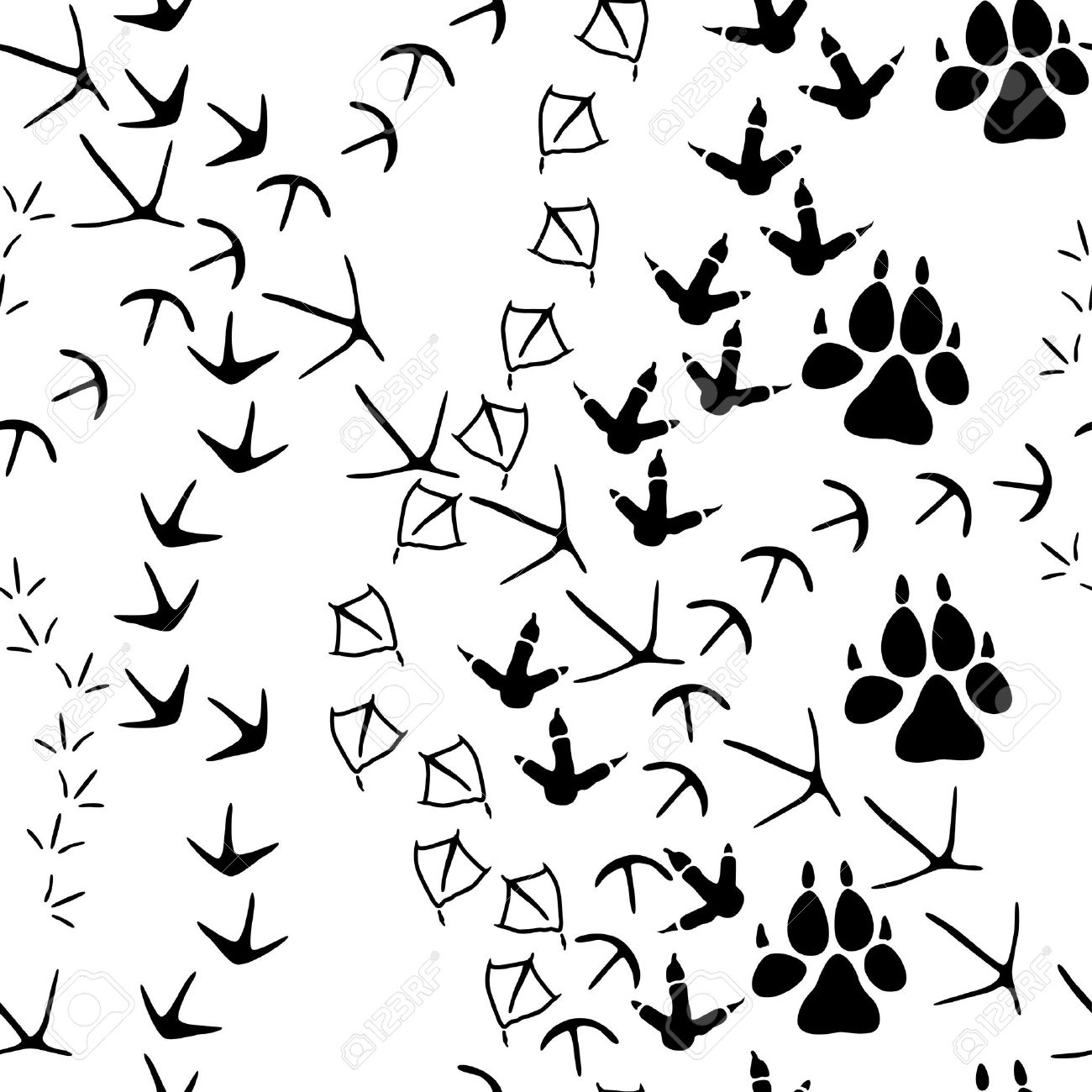 1300x1300 Animal Tracks Clipart Collection