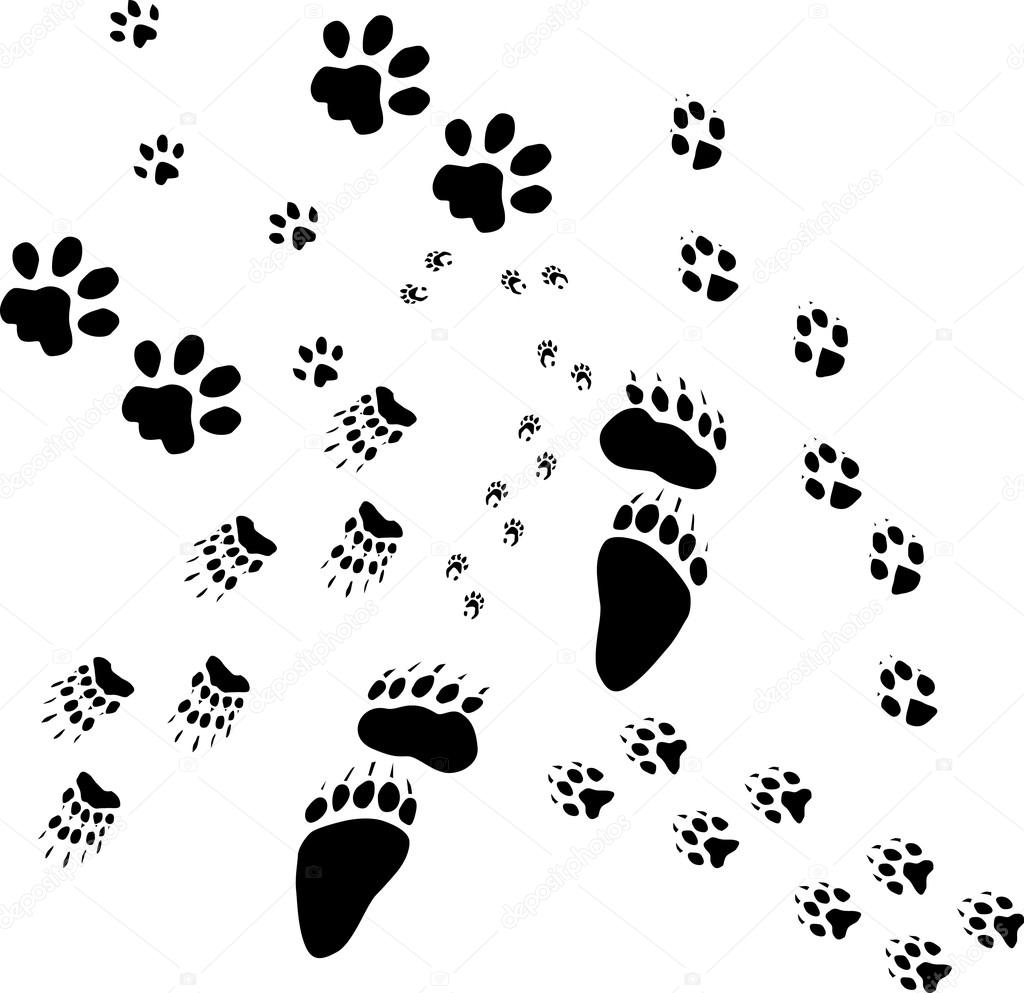 1024x993 Coloring Pages Of Animal Footprints ~ The Ideas Of Coloring Page
