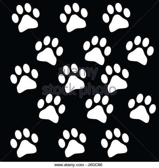511x540 Animal Footprints Illustration Stock Photos Amp Animal Footprints