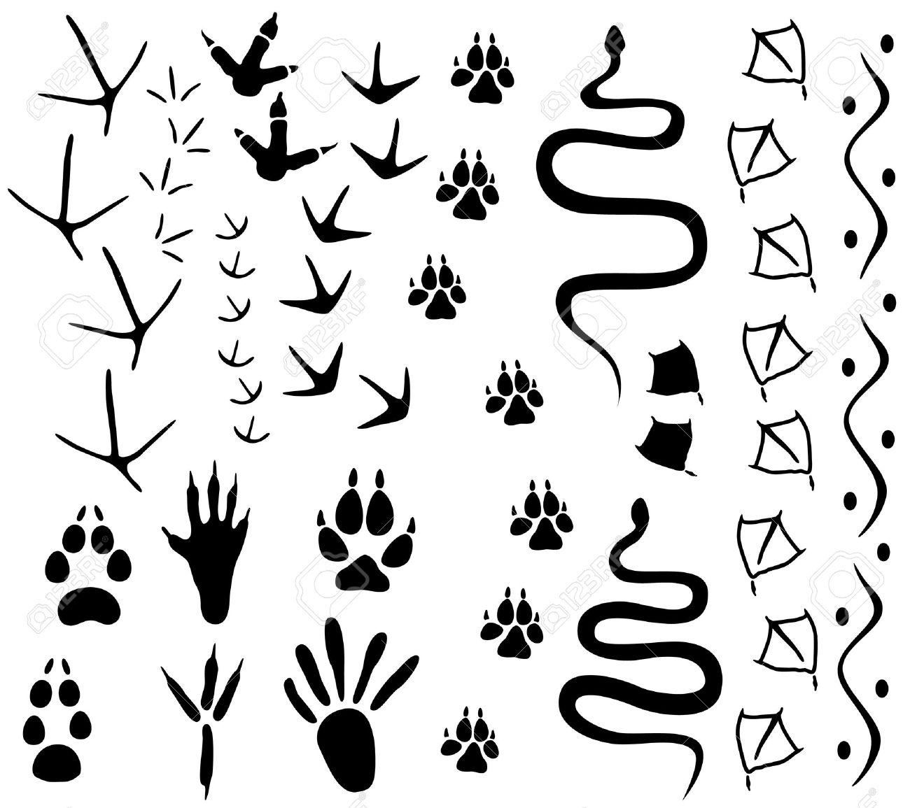 1300x1155 Animal Paw Tracks Royalty Free Cliparts, Vectors, And Stock