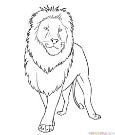 236x278 Coloring Pages Easy Drawing Of A Lion Cartoon Animals Coloring