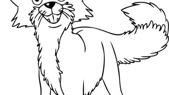 570x320 Cartoon Drawings Of Animals How To Draw Cartoon Animals