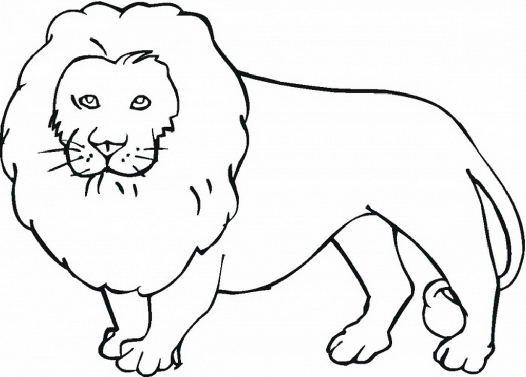 1024x734 Jungle Animals Drawing 12 Pics Of Simple Jungle Coloring Pages