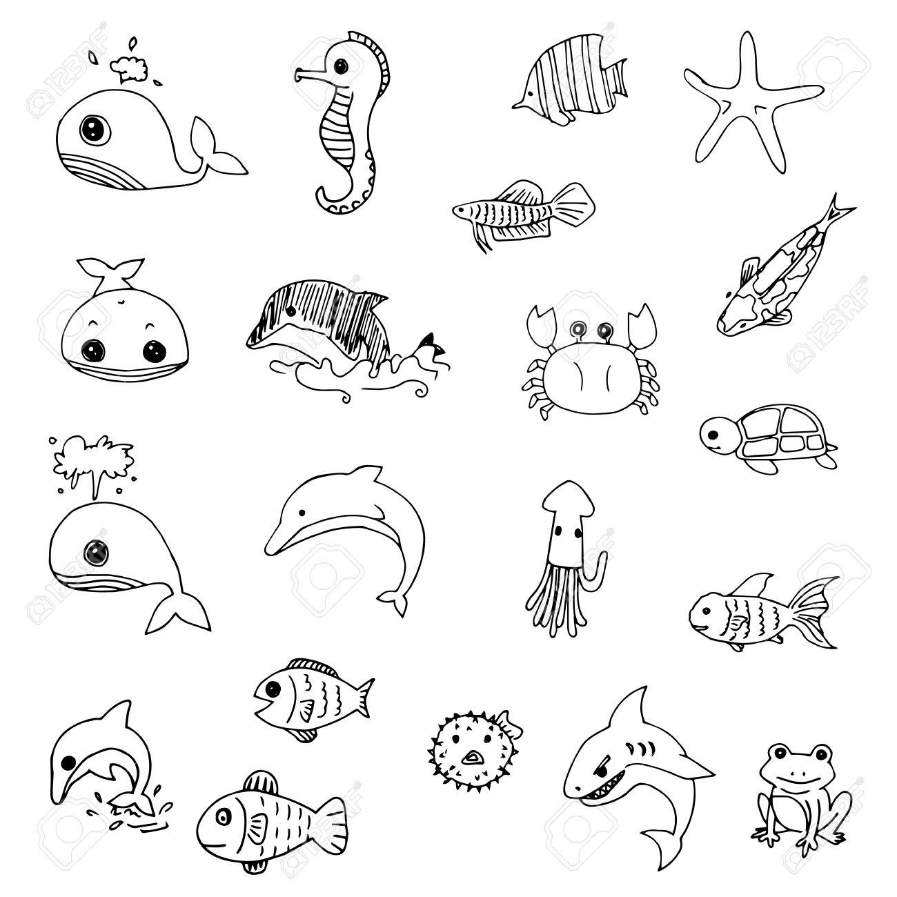 1300x1300 Aquatic Animals Drawn Vector Royalty Free Cliparts, Vectors, And