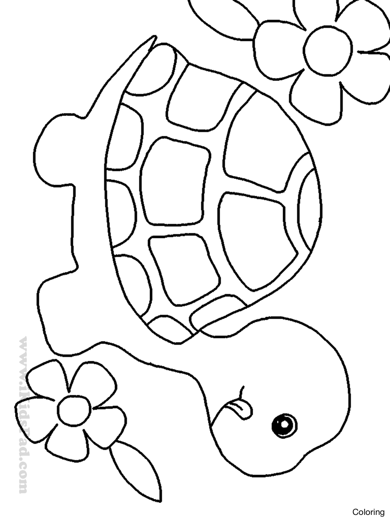 768x1024 Maxresdefault Animal Drawing For Kids Coloring Kaminga How To Draw