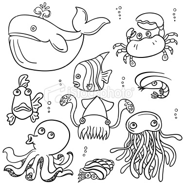 380x380 Cartoon Sea Animal In Line Art Style, Black And White Easy