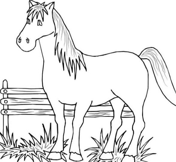 588x541 Coloring Pictures Of Farm Animals U2013 Color Bros