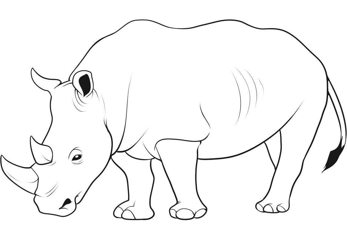 1135x759 Wild Animal Coloring Pages 9 Nice For Kids