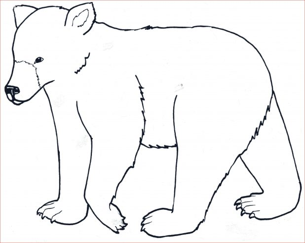 618x491 Drawing Of Wild Animals Images About Pages On Coloring Halloween