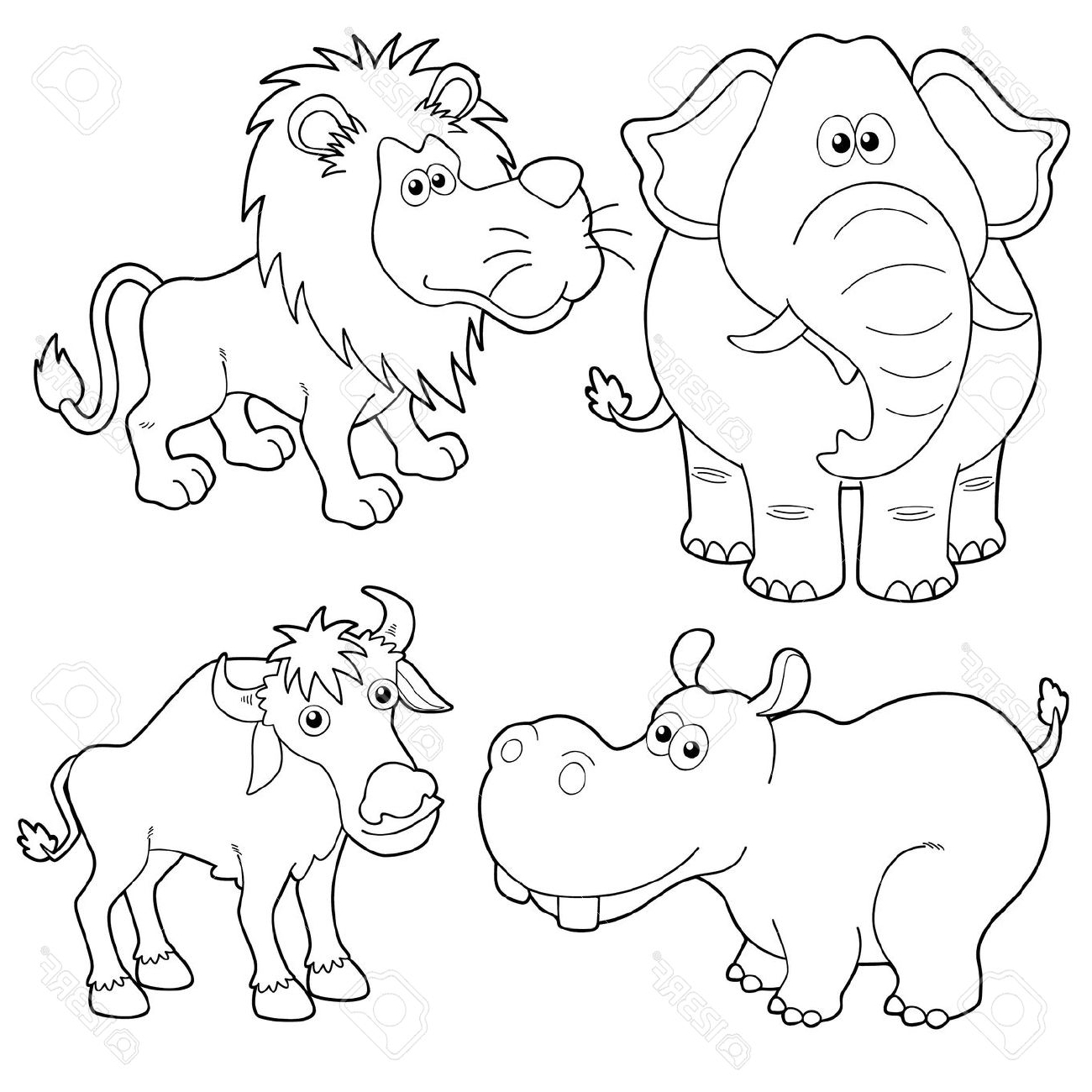 1300x1300 Wild Animals Drawing Pictures