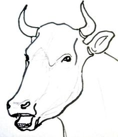 Animals Faces Drawing at GetDrawings com | Free for personal