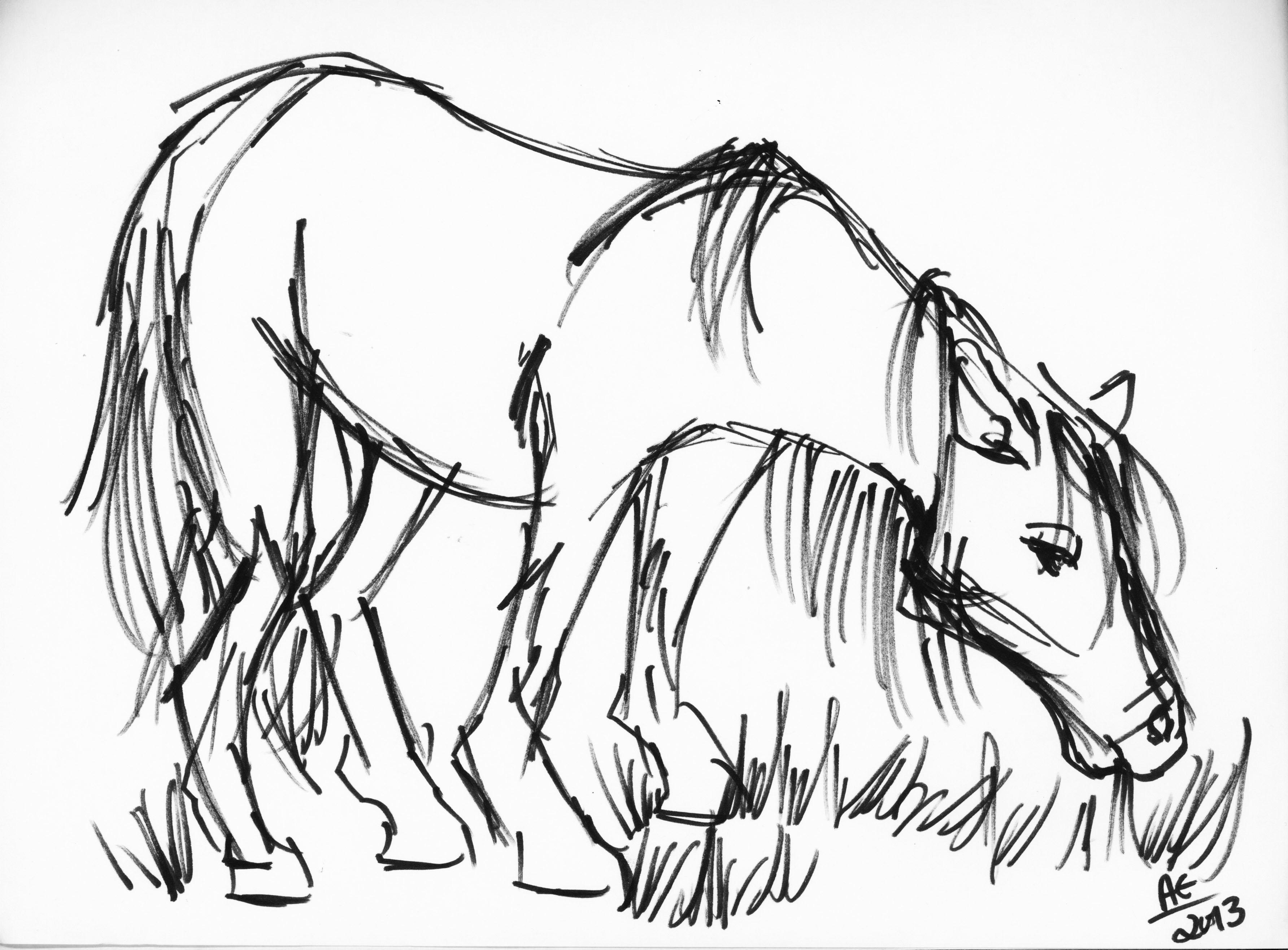 3568x2631 Animal Family Drawings