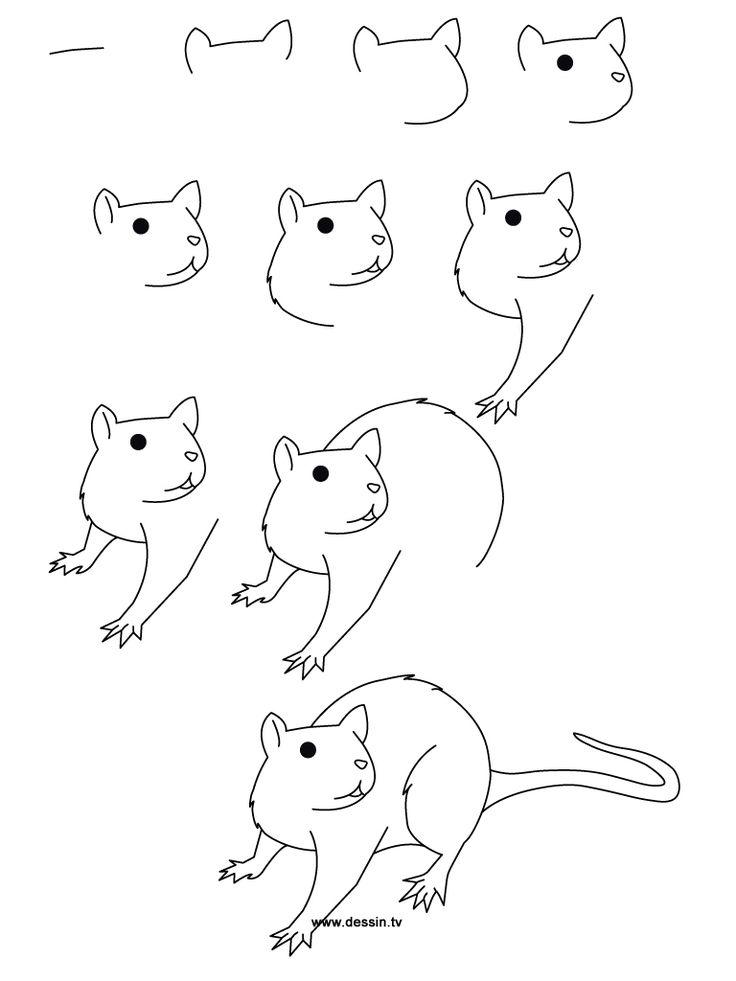 736x981 Drawn Rat For Kid Step By Step Animal