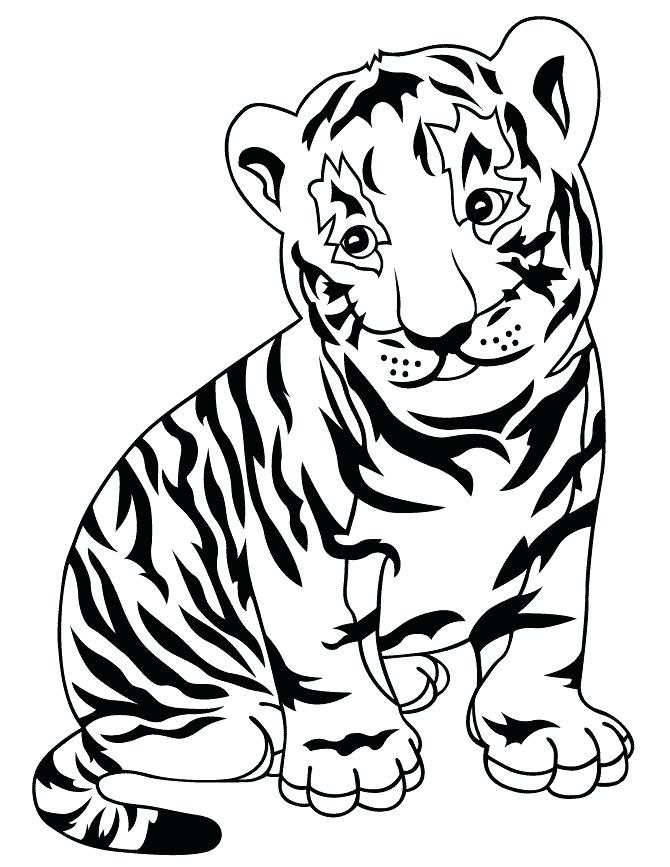 670x867 Baby Tiger Coloring Pages Animals Page A Nice Sketch Of White