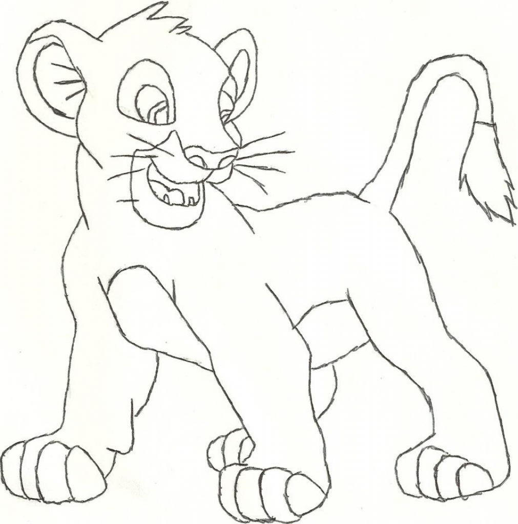 1011x1024 Drawing Of Animals Drawing Animals Pencil Drawing Animals