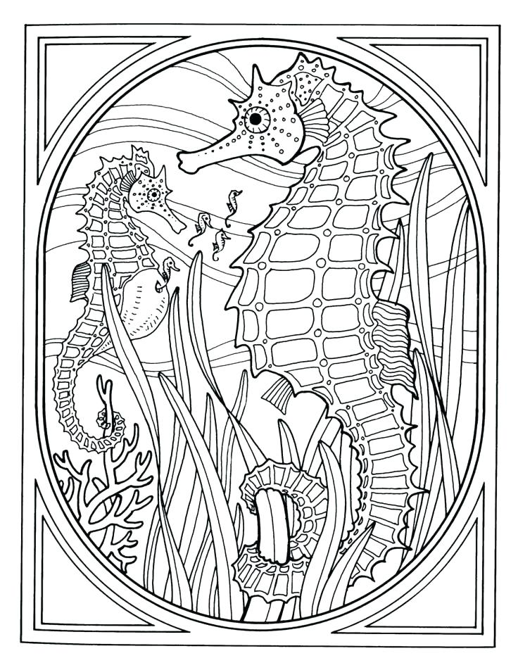 736x952 Marine Life Coloring Pages Sea Animals Coloring Pages Fish Free