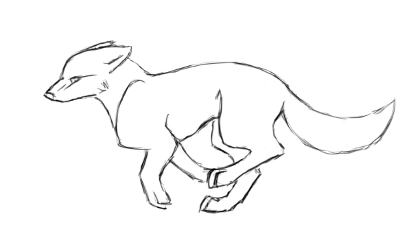 612x360 wolf pencil test animation by eagle flyte on deviantart