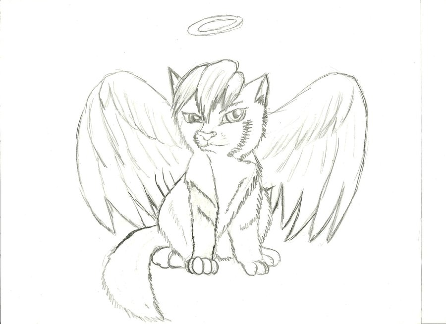 900x654 Anime Angel Wolf Puppy By Lucutiscody