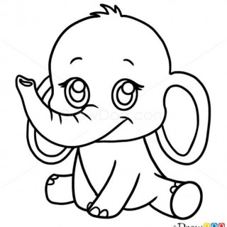 320x320 Basic Drawing Stuff Draw Anime Drawings Easy Elephant