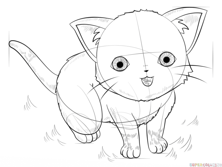 765x575 How To Draw An Anime Cat Step By Step Drawing Tutorials