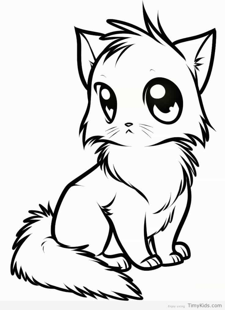 736x1014 Anime Cat Coloring Page Timykids