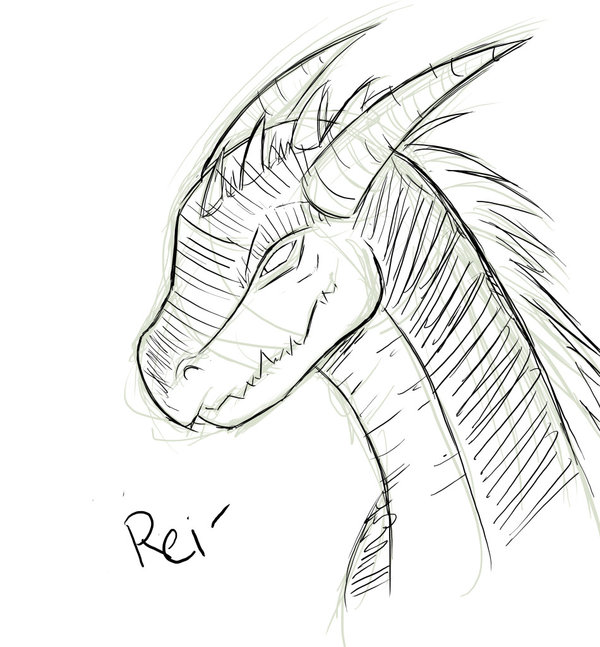 600x647 sketch dragon head by saoshi kun on deviantart