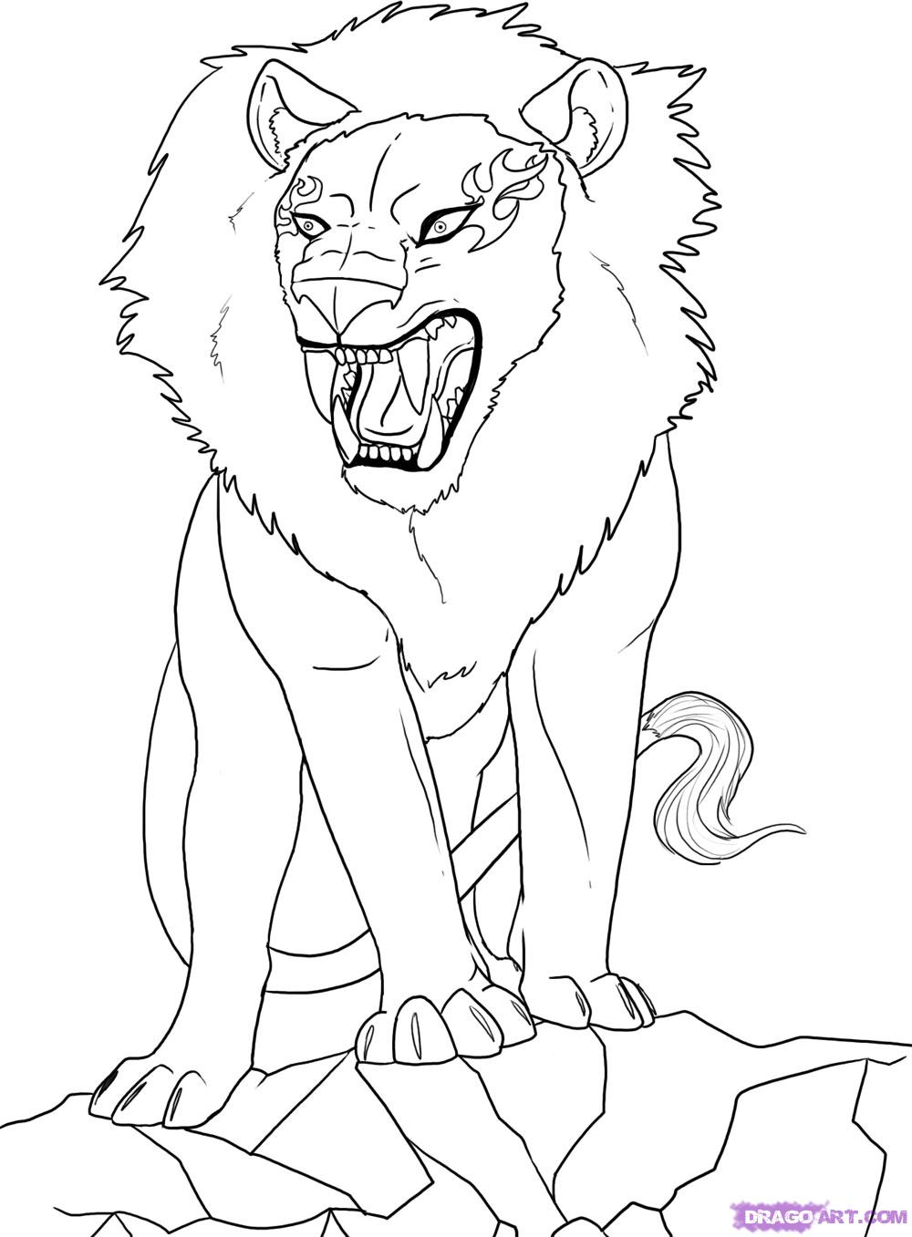 1000x1357 How To Draw An Anime Lion Step By Animals How Adult