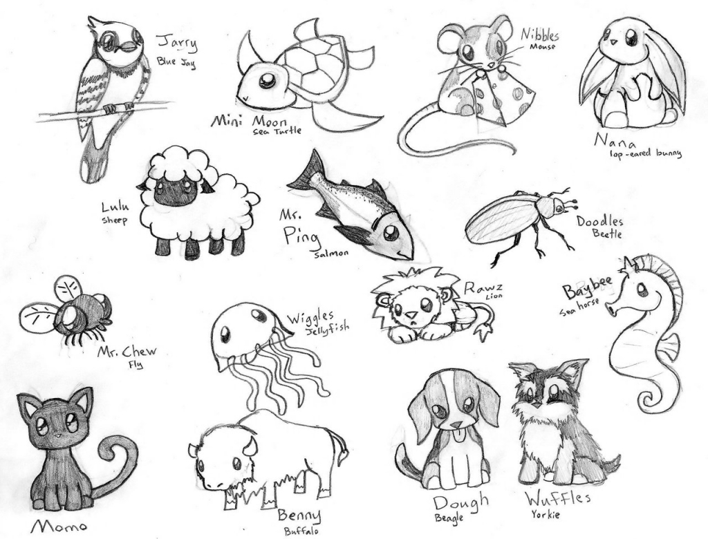 1024x780 How To Draw Manga Animals Ideas About Easy Animal Drawings