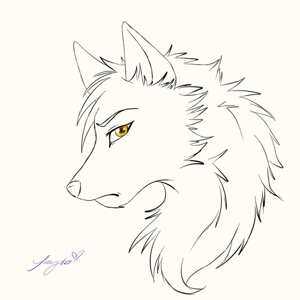1024x1024 Wolf Face Drawing Anime