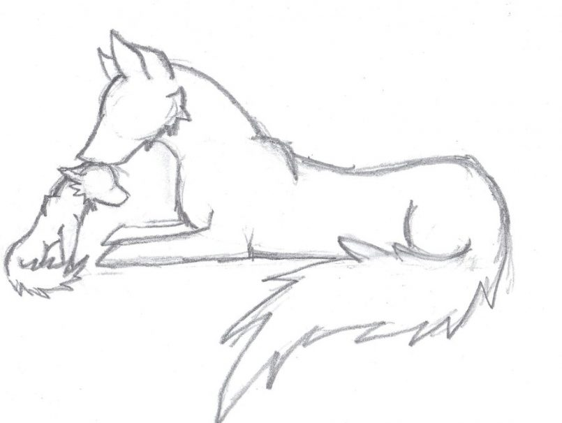 Anime Wolf Drawing At Getdrawings Com Free For Personal Use Anime