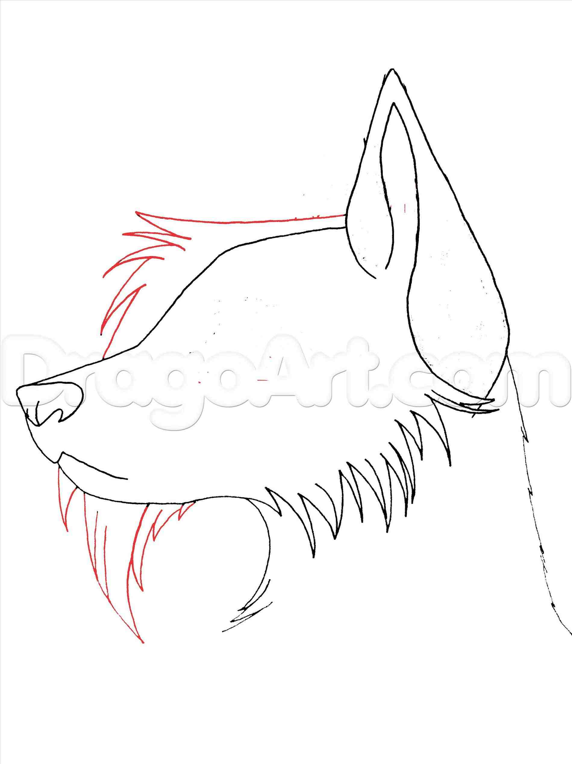 Anime Wolf Head Drawing Tutorial Prettier How To Draw Eye Diagram By Brittlebear On Deviantart At Getdrawings Com Free For Personal Use