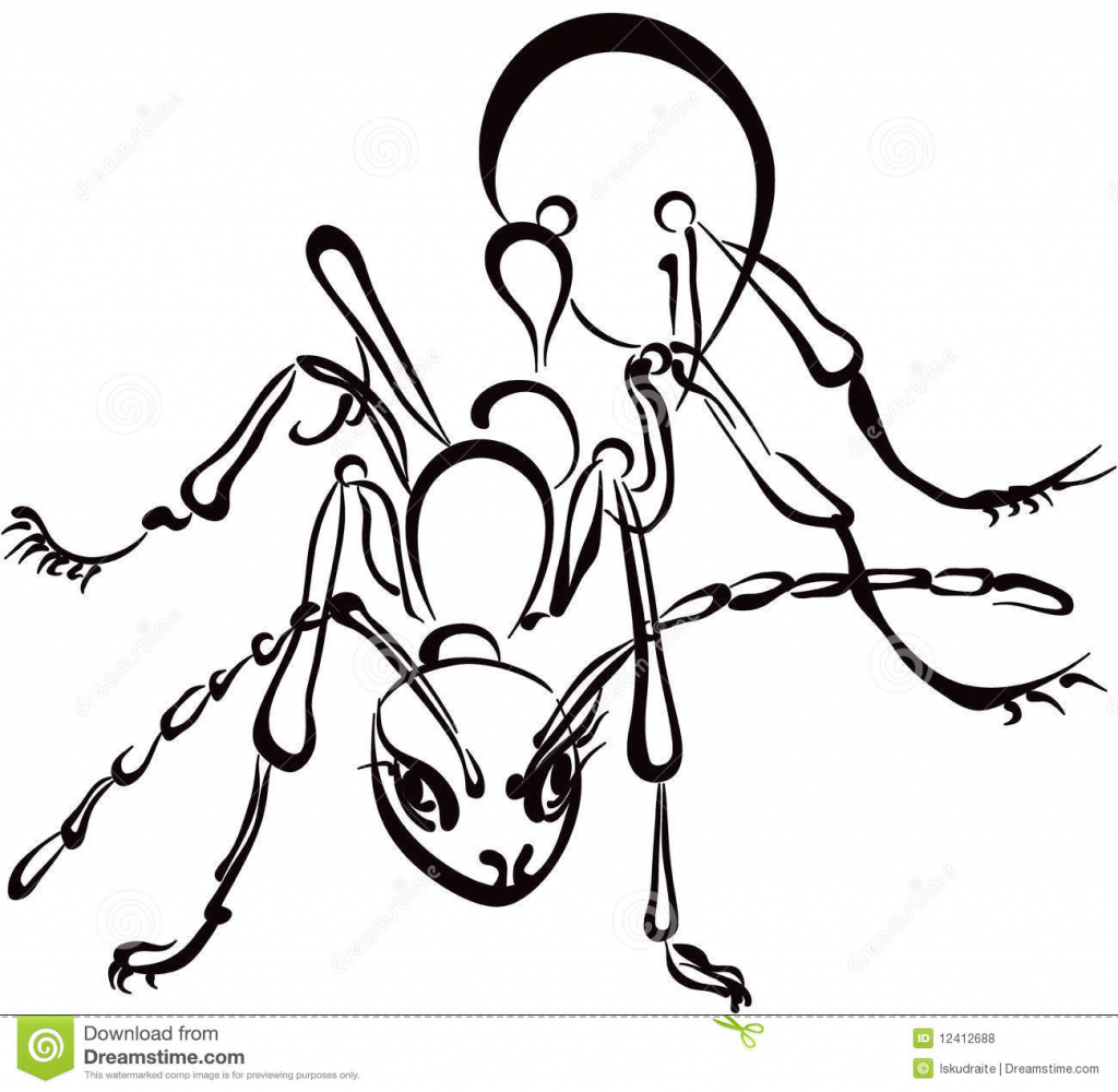 1024x1000 Ant Drawing Picture Ant Drawing For Kids Clipartsco
