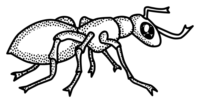 ant line drawing at getdrawings com free for personal use ant line
