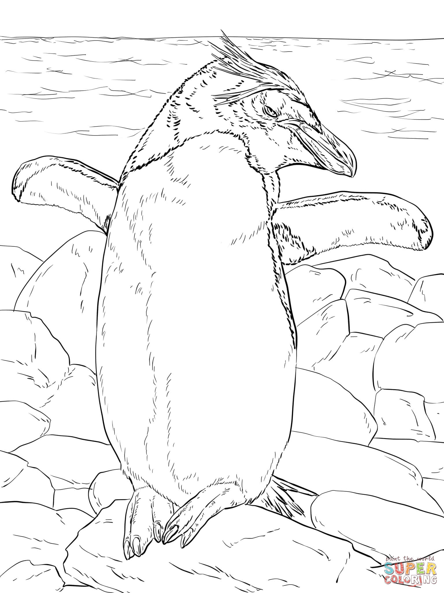 1536x2048 Antarctic Animals Coloring Pages Free Printable Pictures